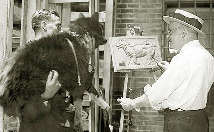 балто википедия фото